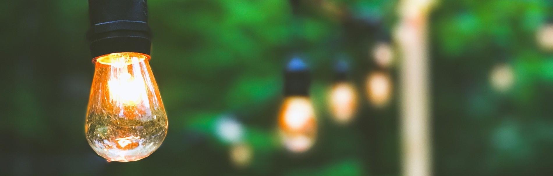 Lichterkette vor grüner Kulisse
